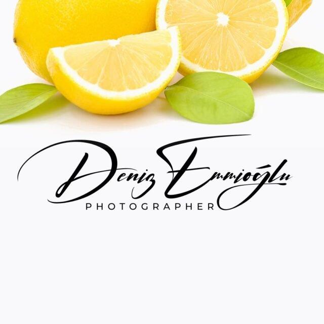 fotoğrafçılar imza örnekleri