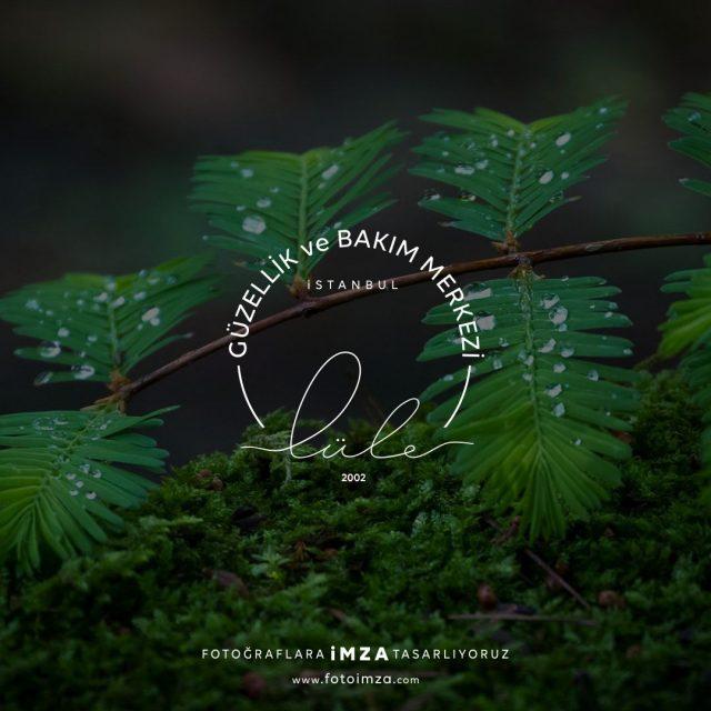 Güzellik ve Bakım Merkezi Logo Tasarımı